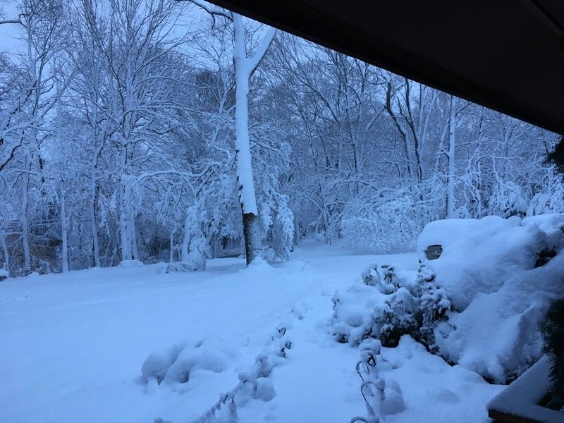 March Madness! Spring Snowstorm Observations Part II - Page 26 22288010