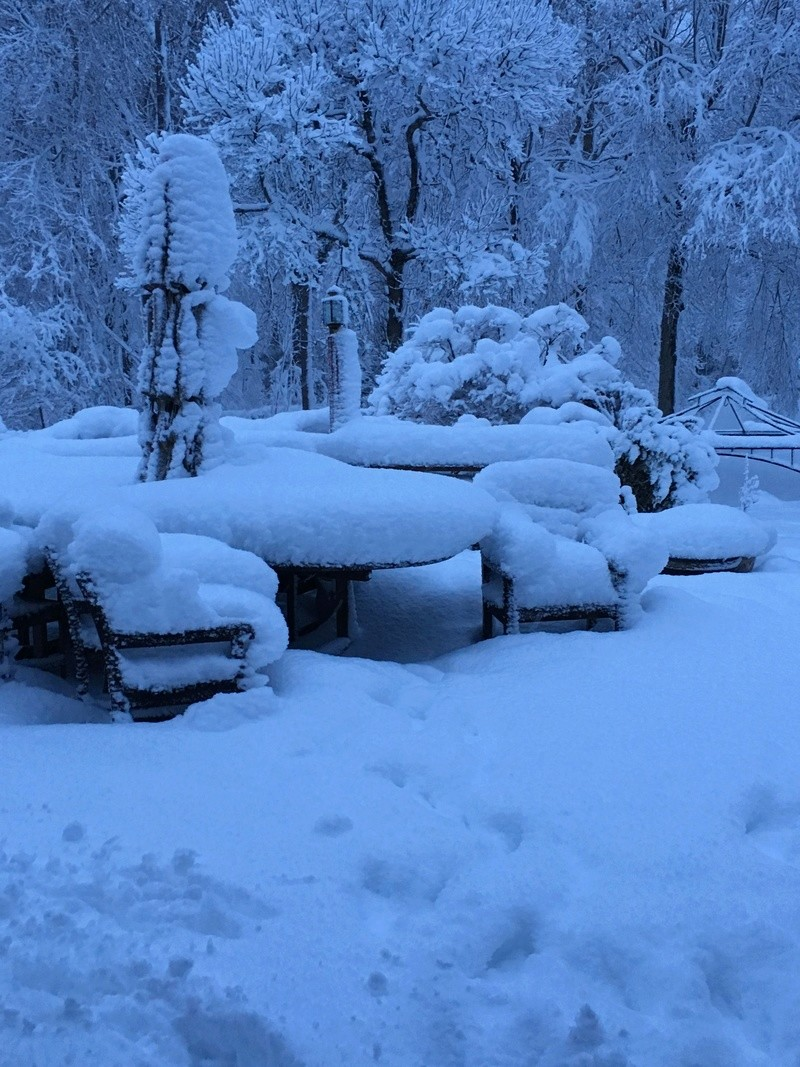 March Madness! Spring Snowstorm Observations Part II - Page 26 4ae89610