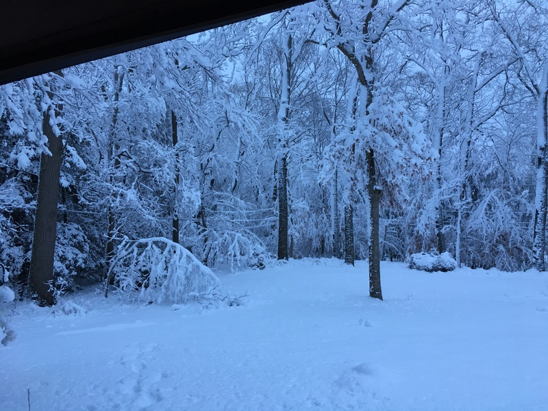March Madness! Spring Snowstorm Observations Part II - Page 26 Fcb46210