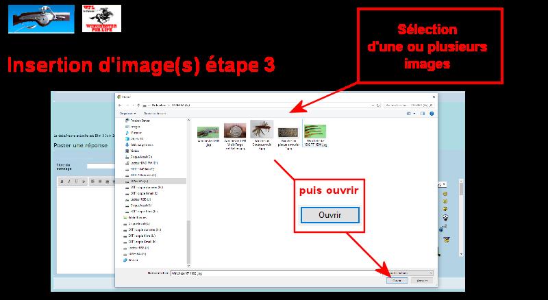 Tutoriel insertion d'images Tuto_p82