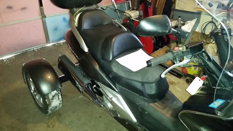 My New SWing Trike Scoot311