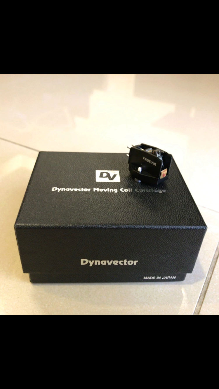 Dynavector DV-20X2 Low Output MC Cartridge (used) SOLD Img_6013