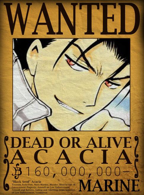 Wanted Board Acacia10