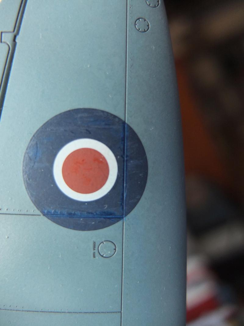 Le spitfire photographe... - Page 5 Dscf1513