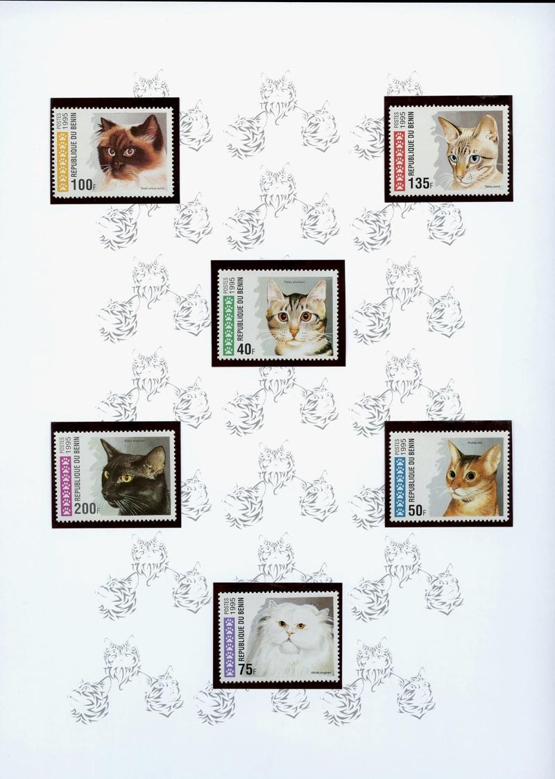Katzen - Seite 2 Hauska10