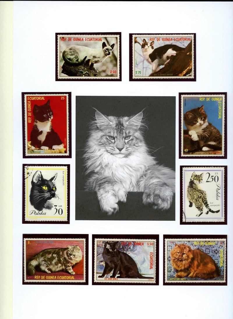 Katzen - Seite 2 Hauska11