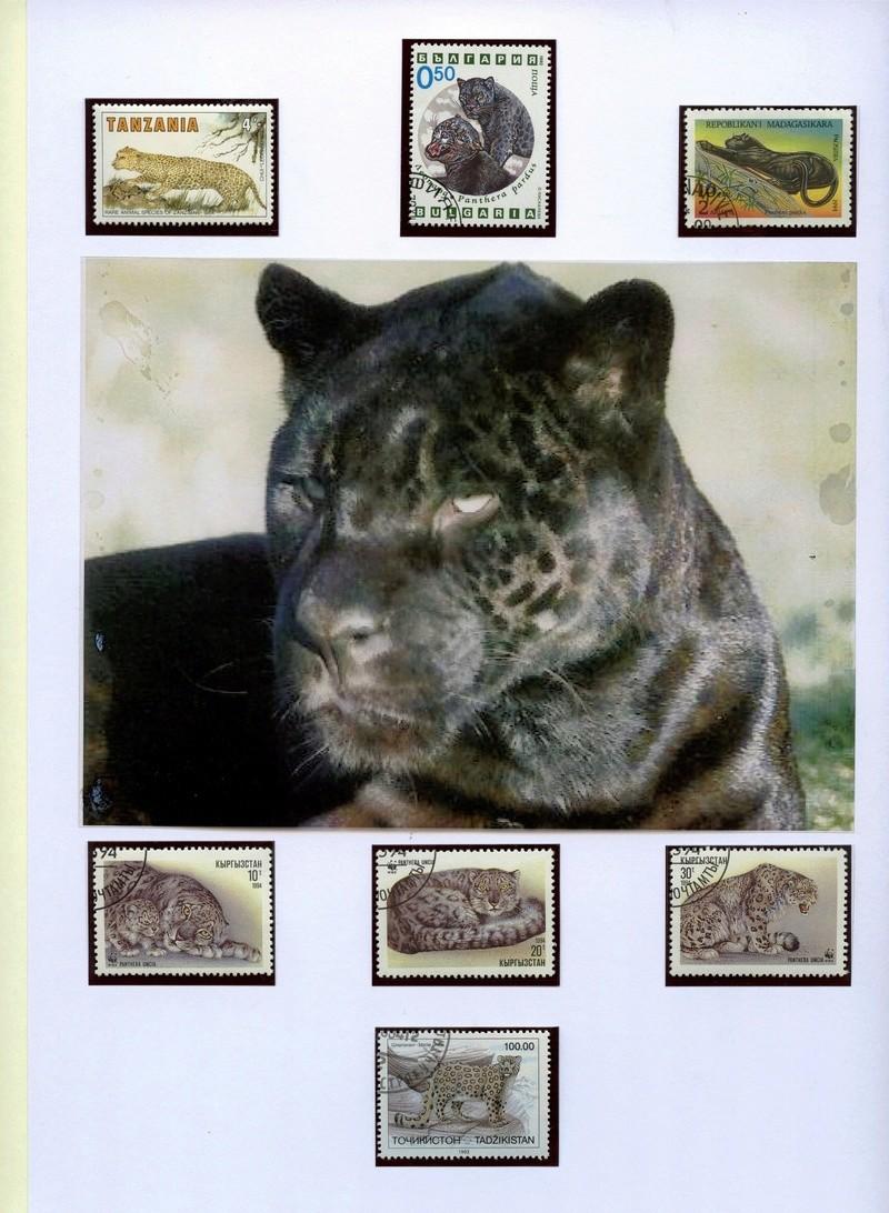 Katzen - Seite 2 Leopar10