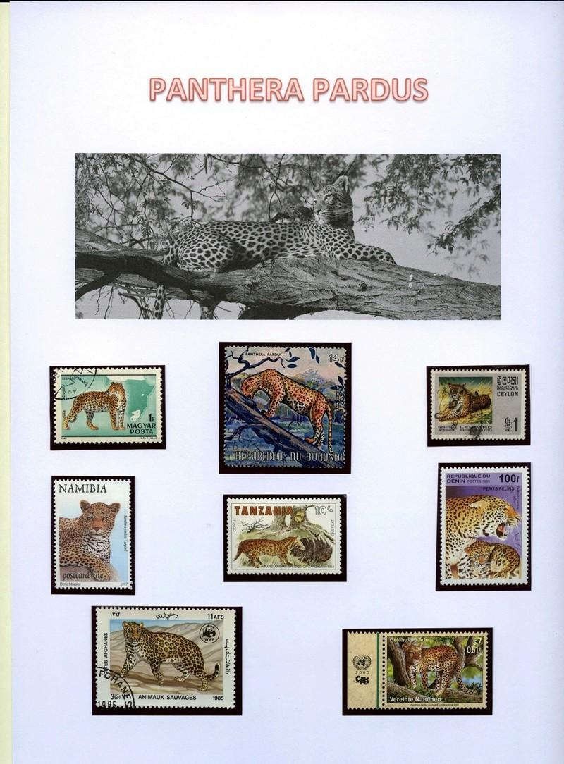 Katzen - Seite 2 Leopar11