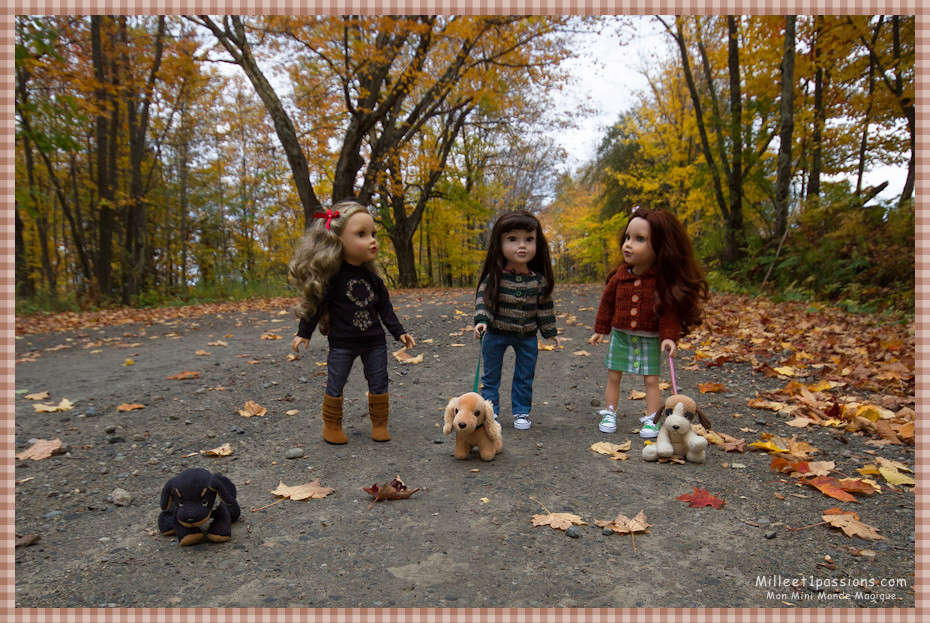 Mes poupées au Canada/USA : 25/06 - p.36   (nettoyage de voiture, balade et question, robe amérindienne, esquimau glacé) - Page 5 Img_9710