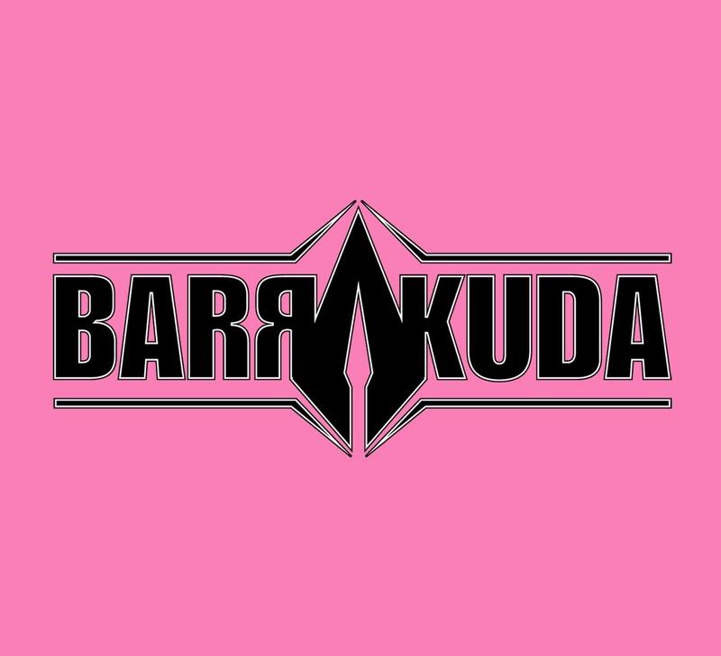 Le Nouvel EP de BARRAKUDA arrive bientôt. 26232510