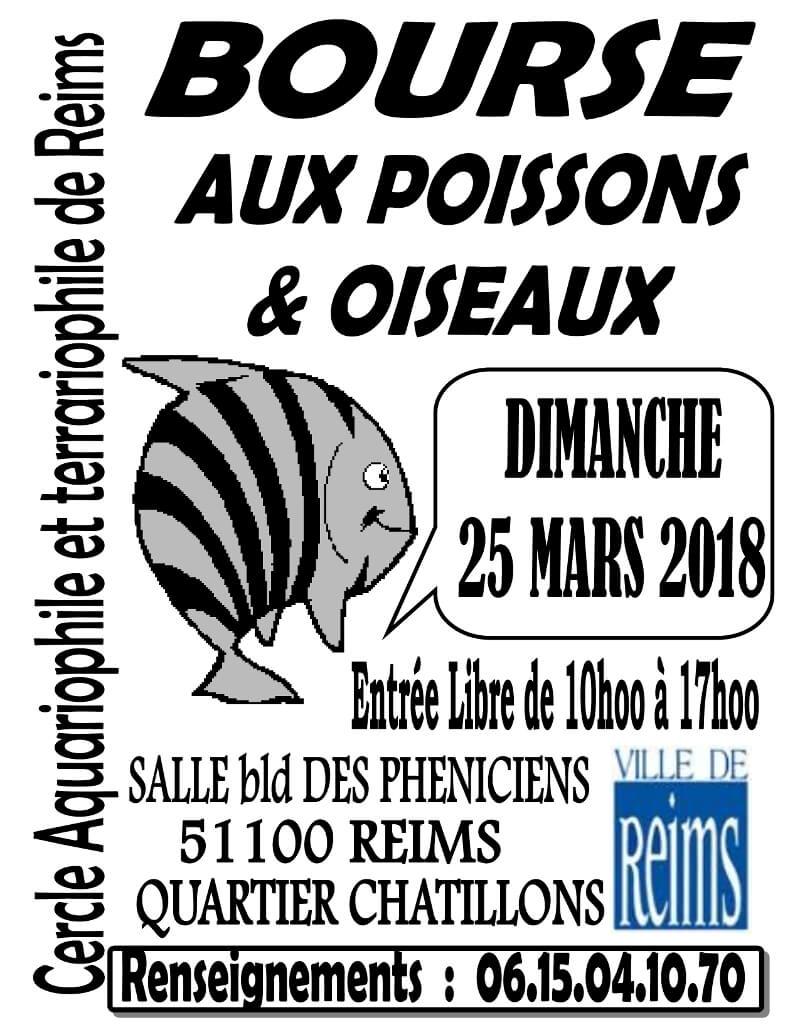 REIMS (51) - BOURSE aux POISSONS et OISEAUX  LE 25 Mars 2018 2018-010