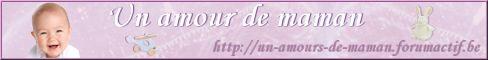 Bannières et logo Bannie11
