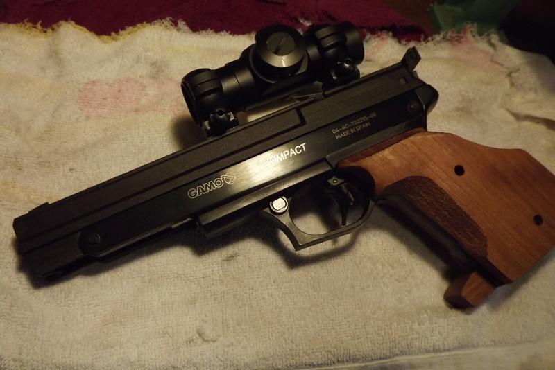 Red Dot for air pistol? Dscf0210