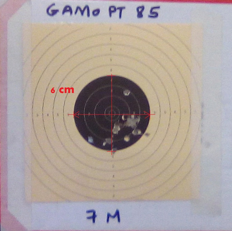 avis sur GAMO P25 Blowback ? Img_2086