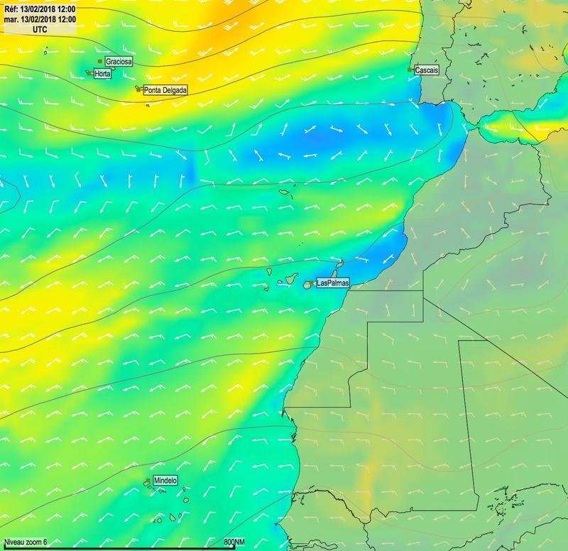 Cap Vert - Açores - Canaries Mar13010