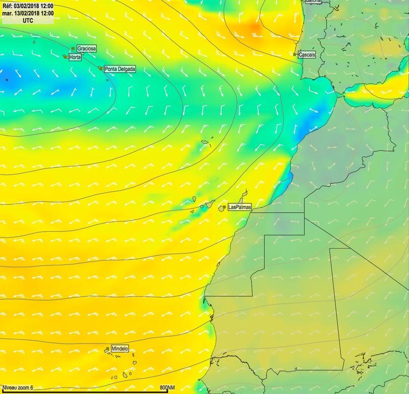 Cap Vert - Açores - Canaries Mar13011