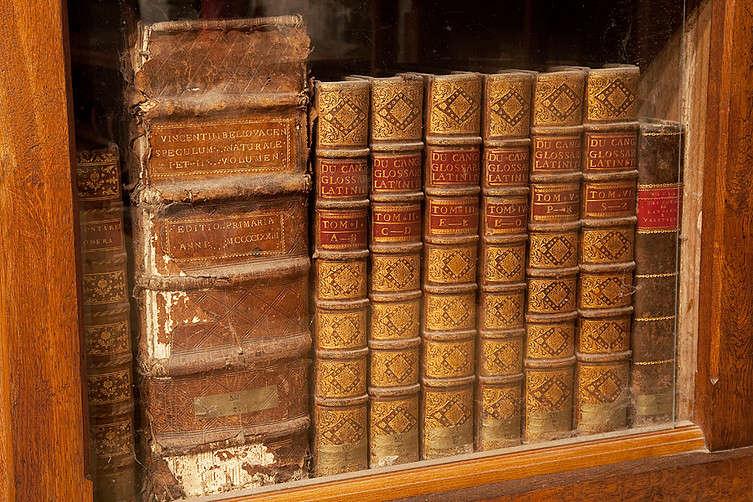 La Bibliothèque du Château de Menthon-Saint-Bernard 08cacb11