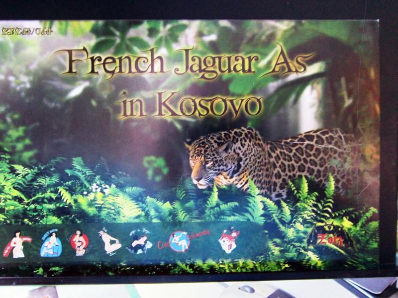 """Jaguar """"A"""" appui tactique [1/50° de Heller]  voila il est Fini les photos(tof faites dehors en plus) - Page 2 Img_6363"""