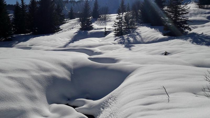 quelques photos des alpes du nord 20180313