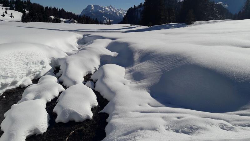 quelques photos des alpes du nord 20180314
