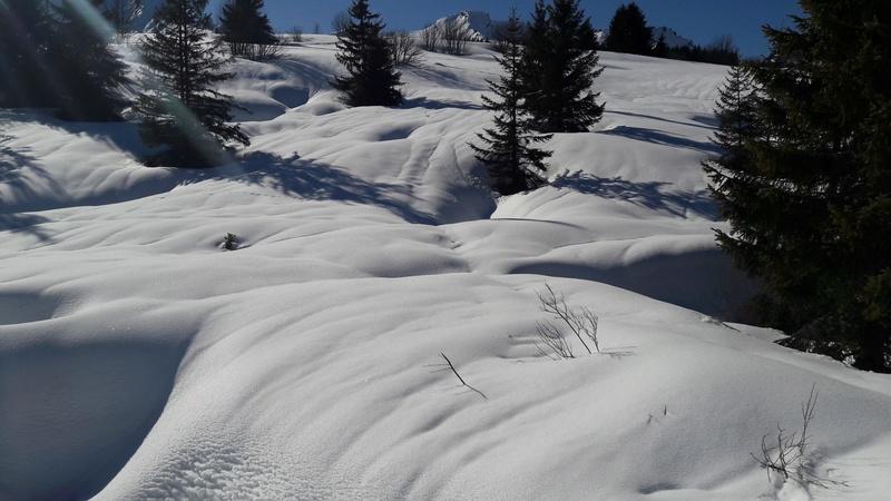 quelques photos des alpes du nord 20180315
