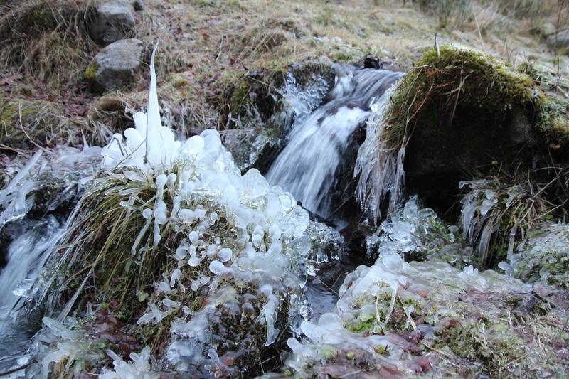 le long d'un torent l'année dernière en forêt noire Img_2511