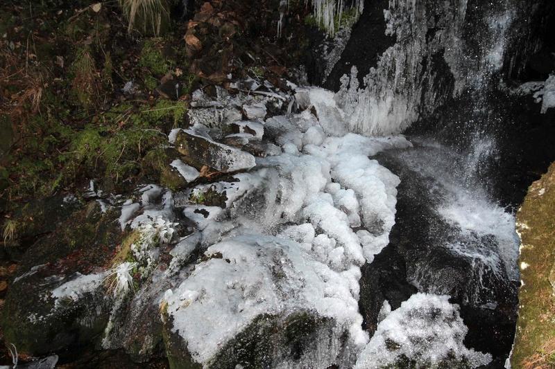 le long d'un torent l'année dernière en forêt noire Img_2611