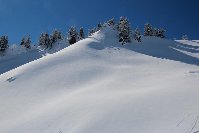 quelques photos des alpes du nord Img_4422