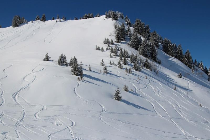 quelques photos des alpes du nord Img_4423