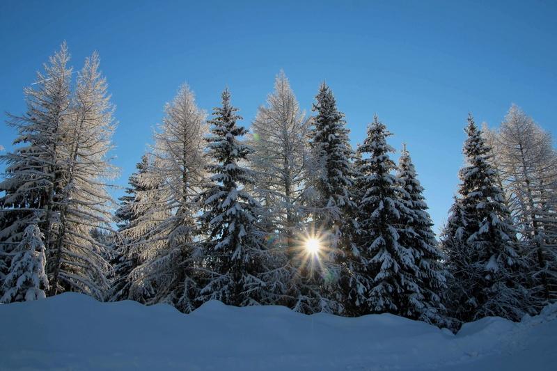 quelques photos des alpes du nord Img_4424