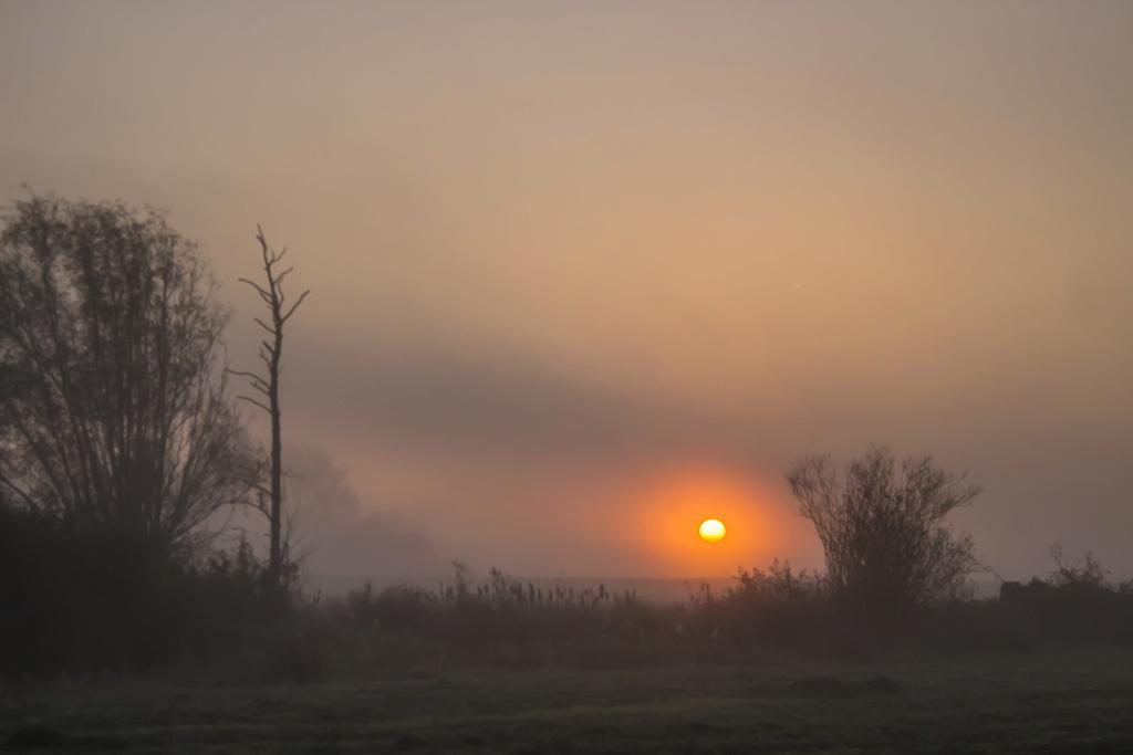 Soleil dans la brume Bocage11
