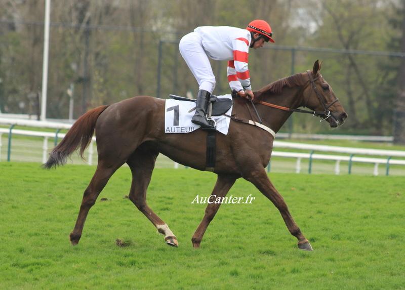 Photos Auteuil 7-04-2018 5j6a6215