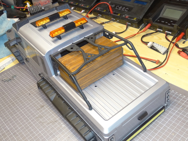 Surpass WILD 3 6WD Crawler 1:10 - Seite 5 Dsc00623