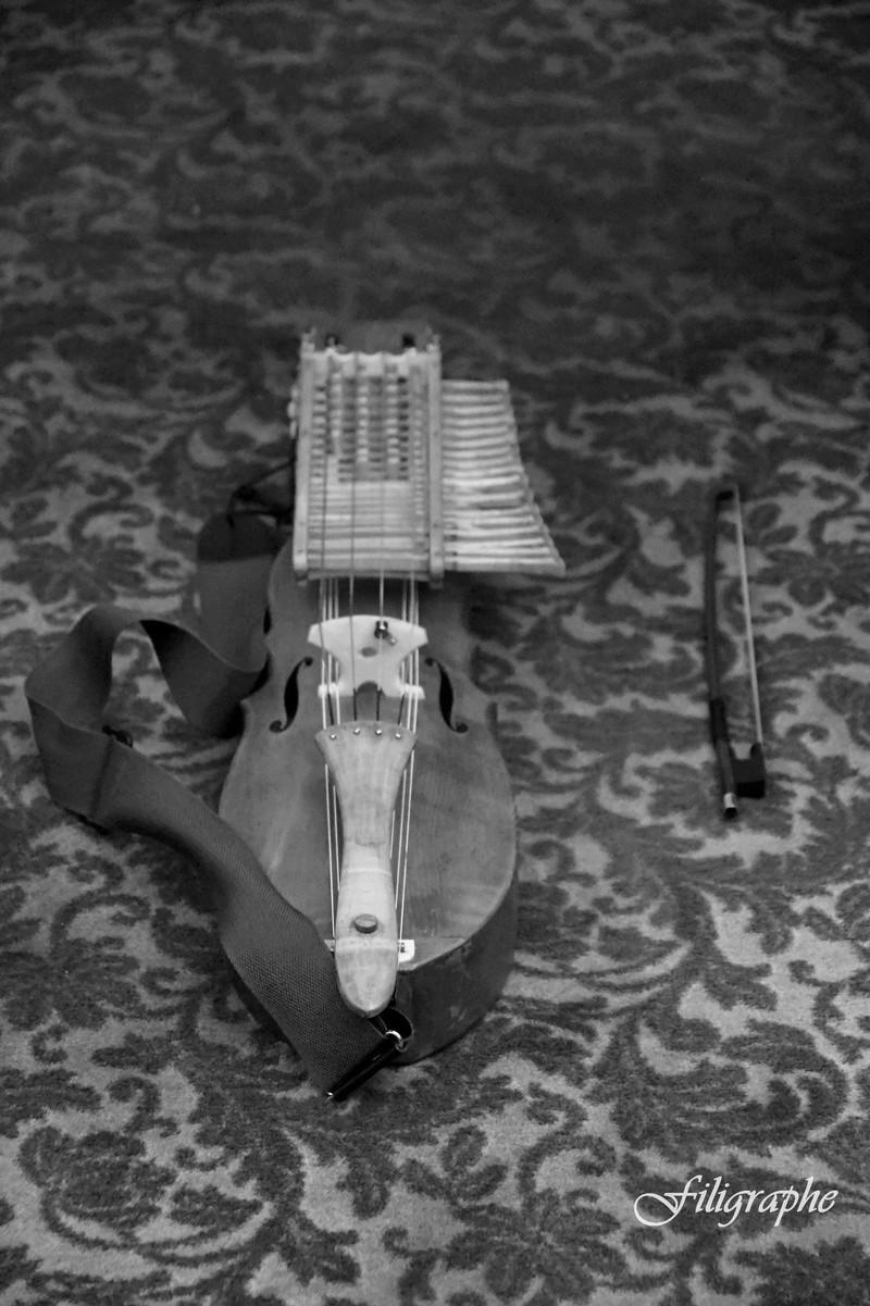 [Musique] La/le Nyckelharpa Fancy_12