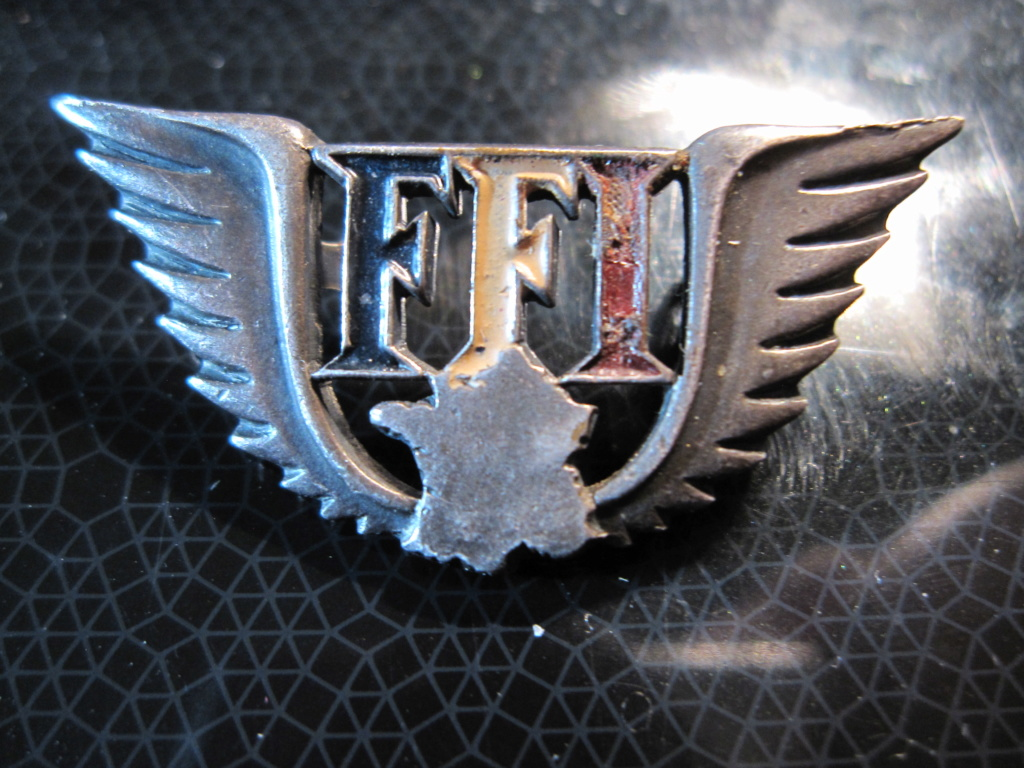 badge FFI Img_4110