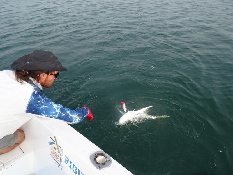 Voyage pêche EXO - Page 2 Dsc02337