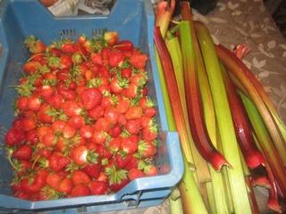 Confiture aux fraises /basilic. 18835512