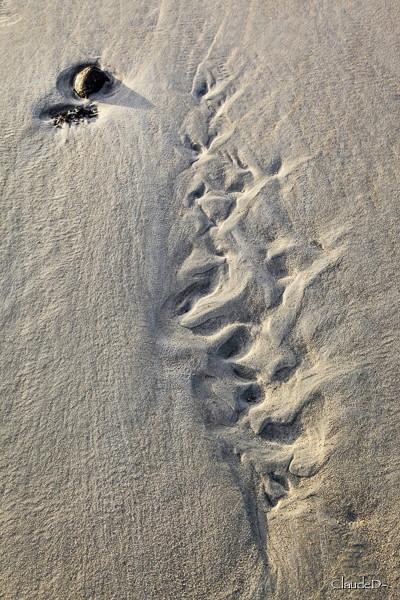 Série sur sable Sursab14