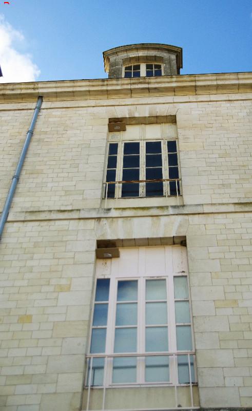 Le Service Historique de la Défense, protège ses hirondelles de fenêtre (Delichon urbicum) ! Imgp4911