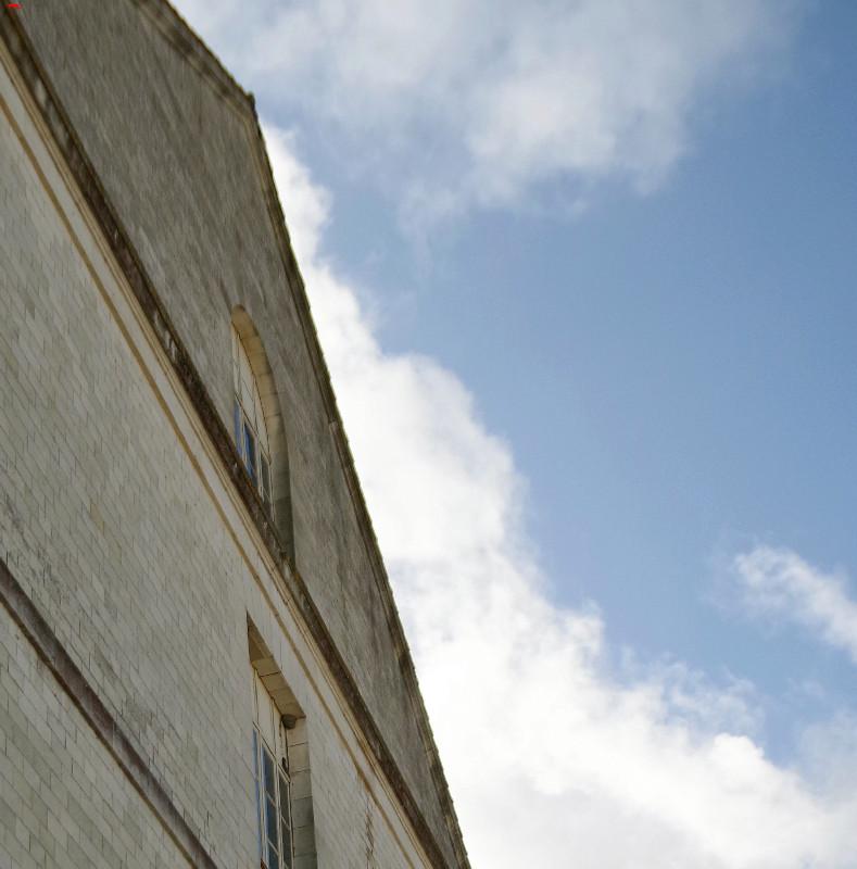 Le Service Historique de la Défense, protège ses hirondelles de fenêtre (Delichon urbicum) ! Imgp4914