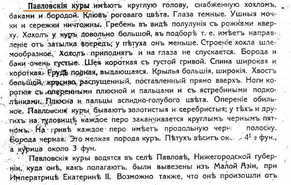 Павловская порода кур - Страница 19 0155