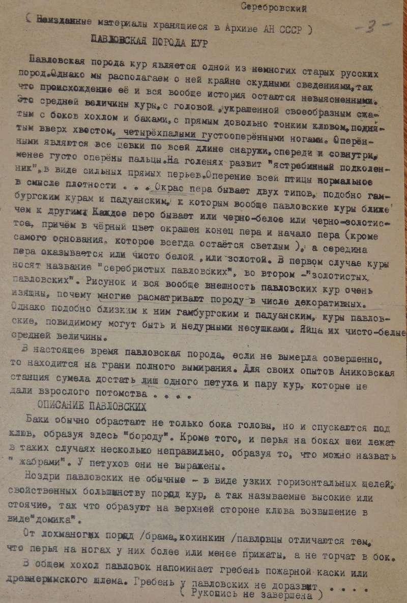 Павловская порода кур - Страница 19 Dscn3210