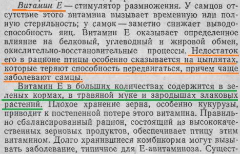 Советы новичку о курочках! - Страница 6 Image262