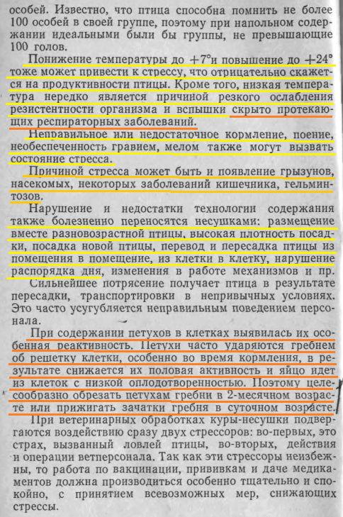 Советы новичку о курочках! - Страница 6 Image483