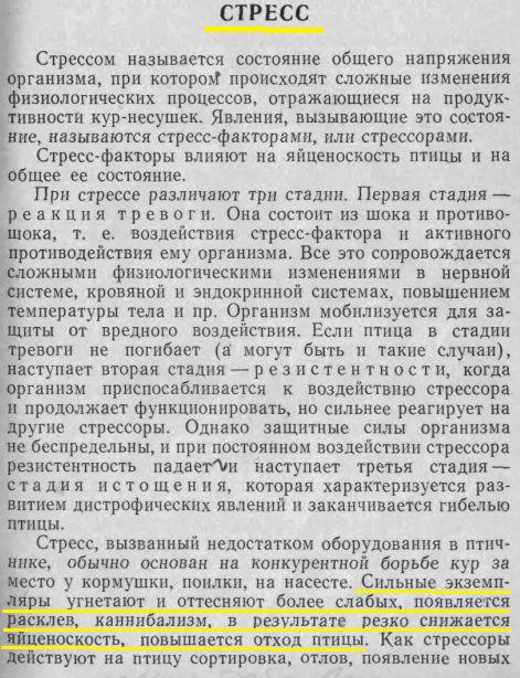 Советы новичку о курочках! - Страница 6 Image484