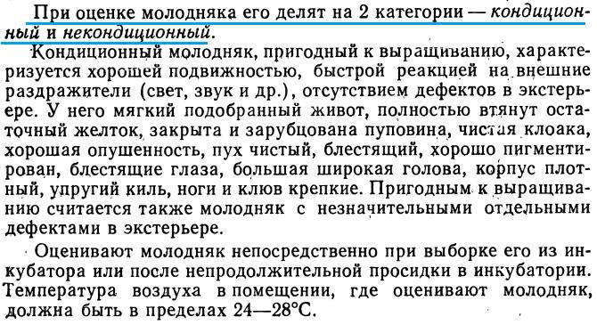Советы новичку о курочках! - Страница 4 Image_39