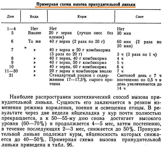 Советы новичку о курочках! - Страница 5 Image_60