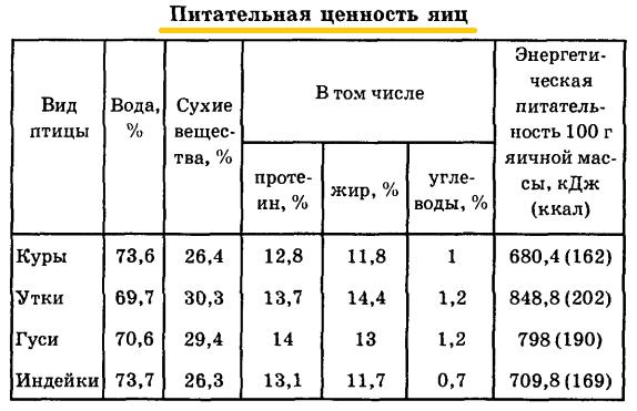 Советы новичку о курочках! - Страница 5 Image_75