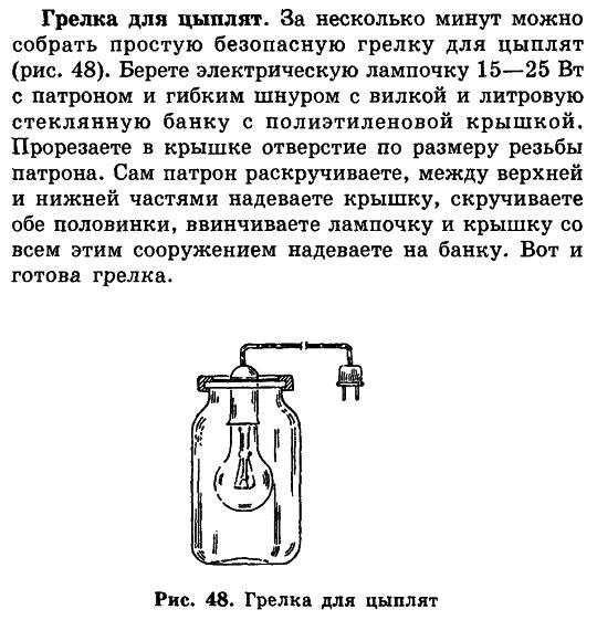 Советы новичку о курочках! - Страница 5 Image_78