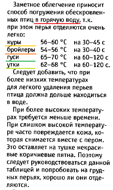 Советы новичку о курочках! - Страница 5 Image_90